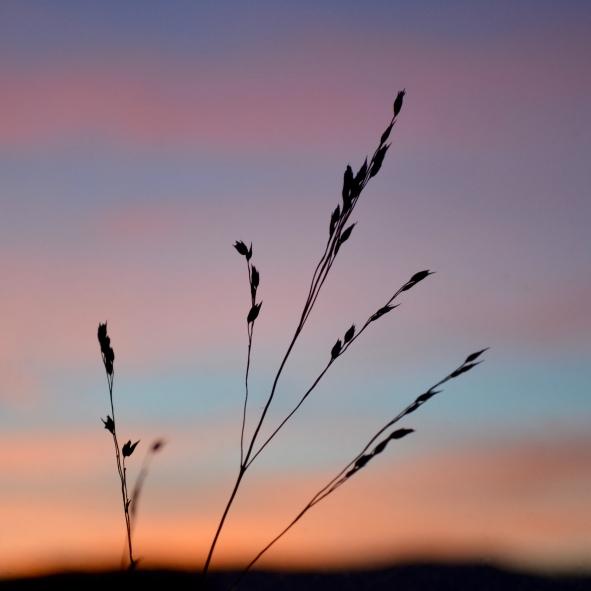sky-clouds-sunset